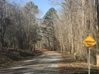 Wooded Hunting Land Montgomery : Ramer : Montgomery County : Alabama