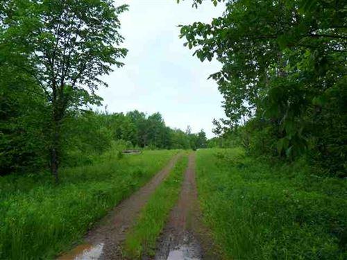 Over 2,000 Acres Recreation 1119137 : Greenland : Ontonagon County : Michigan