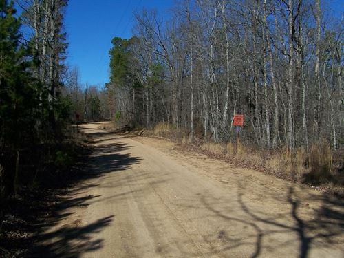 Arkansas Ozarks Hunting Land : Leslie : Searcy County : Arkansas