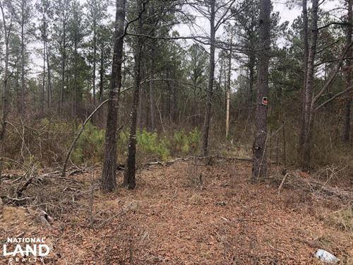 Cowpen's Branch, Residential, Timb : Monroe : Union County : North Carolina