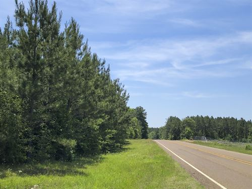 163 Ac Cr 2108 : Burkeville : Newton County : Texas