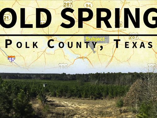 6.8 Ac Bold Springs Ray Marsh Road : Livingston : Polk County : Texas