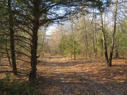 Prime Building Tract In Sawyer Cho : Hugo : Choctaw County : Oklahoma