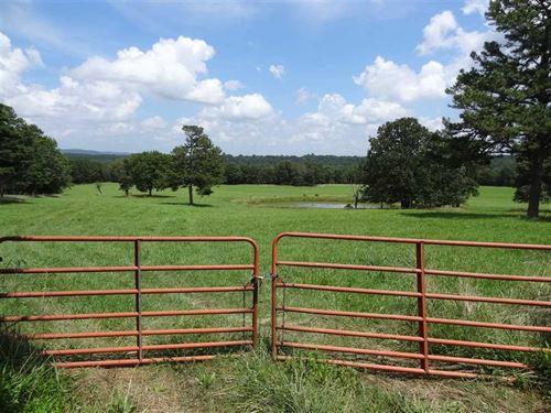 161 Acres Timber & Pasture : Clinton : Van Buren County : Arkansas