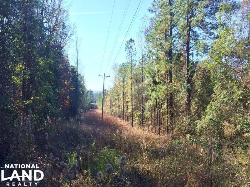 Home Site And Recreational Tract : Tallassee : Elmore County : Alabama