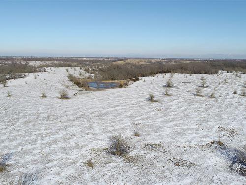 Monroe County Pasture & Hunting : Albia : Monroe County : Iowa