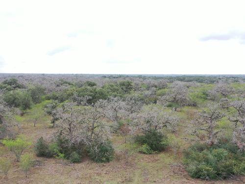 Buch Lane 70 : Cuero : Dewitt County : Texas