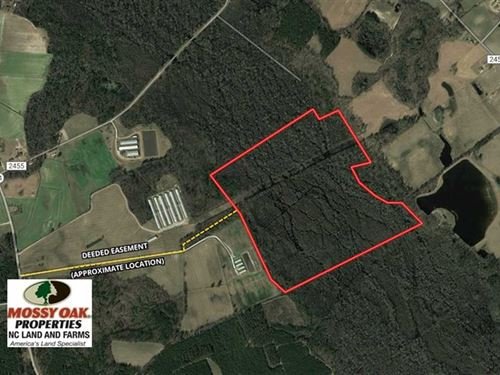 125 Acres of Hunting Land For Sale : Fairmont : Robeson County : North Carolina