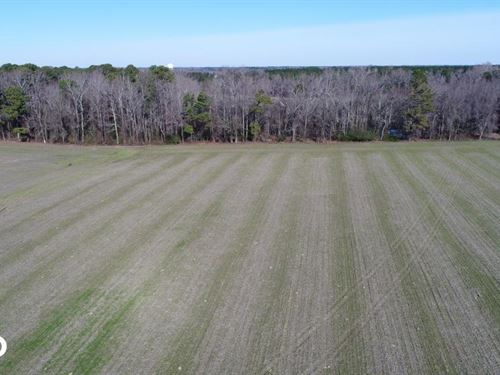 Union Grove Church Road Mini-Farm : Fremont : Wayne County : North Carolina