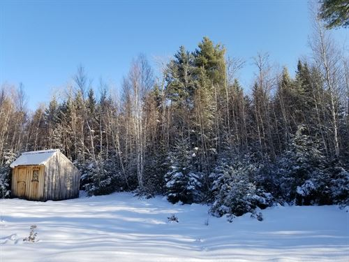 Mellor Tract Springfield : Springfield : Penobscot County : Maine