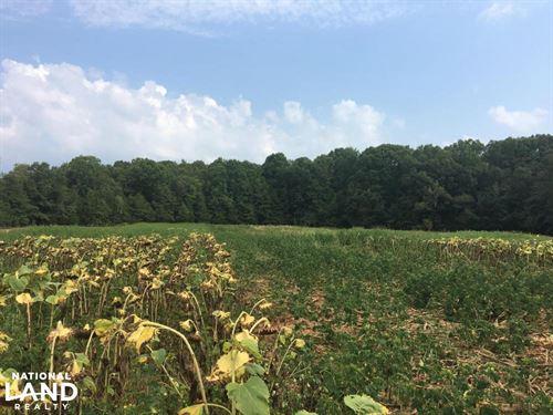 Hogskin Hunt Club Share : Honea Path : Abbeville County : South Carolina