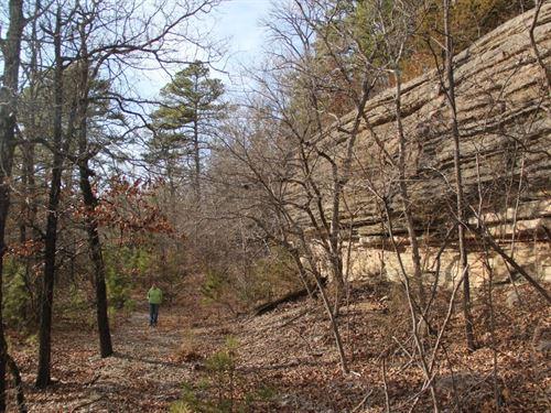 Spring Big Views 22 Acres Kings : Eureka Springs : Carroll County : Arkansas