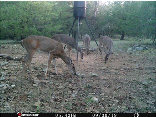 Hunting Land Moyers,Ok-Recreational : Moyers : Pushmataha County : Oklahoma