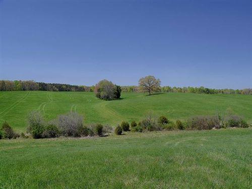Lone Oak Farm : Louisa : Virginia
