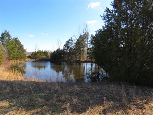Land in The Ozarks, Ava, MO : Ava : Douglas County : Missouri