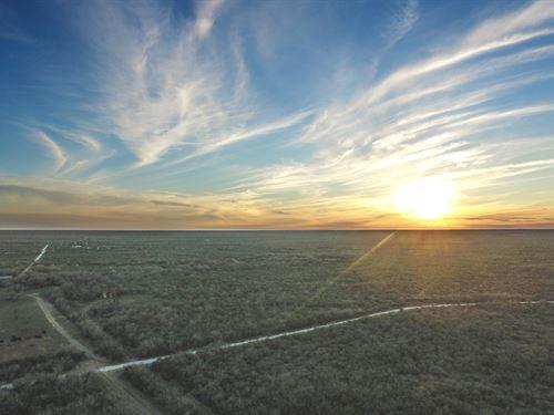 Saenz Ranch : San Diego : Duval County : Texas