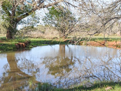 Bercher Ranch : San Diego : Duval County : Texas