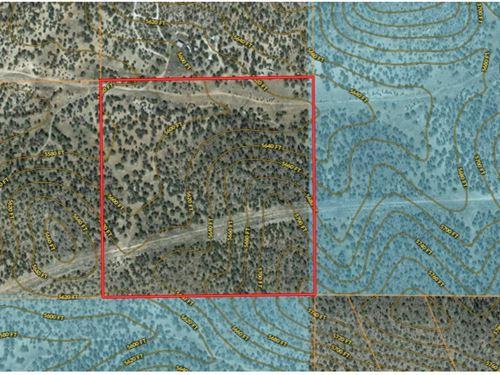 Hunting Land Borders State Land : Seligman : Yavapai County : Arizona