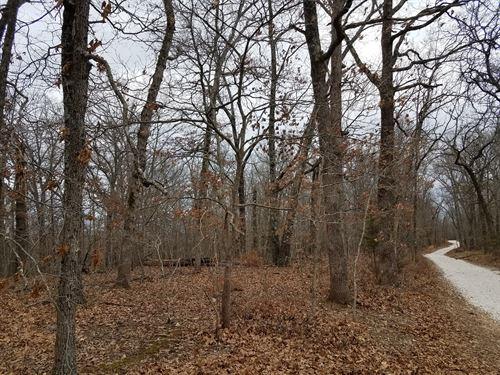 Land Missouri, 17 Acres Land, Hunt : Gravois Mills : Morgan County : Missouri