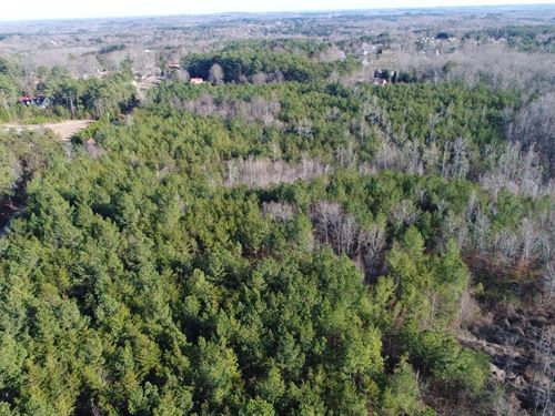 35+/- Acres Limitless Possibilities : Landrum : Spartanburg County : South Carolina