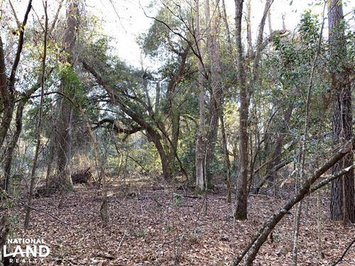 Lakewood Plantation : Manning : Clarendon County : South Carolina