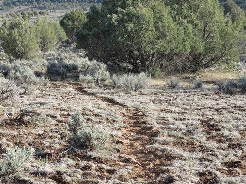 Lot 5 Pinon Hills Ranch Pagosa : Pagosa Springs : Archuleta County : Colorado