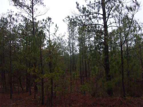 849 Acres in The City Limits of Eu : Eufaula : Barbour County : Alabama