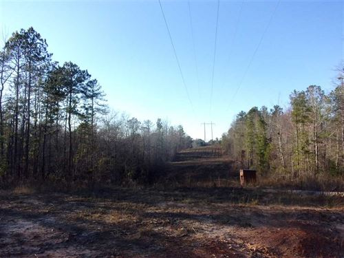 Excellent Hunting Tract-475 Acres : Eufaula : Barbour County : Alabama