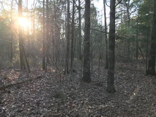 5 Acres, Fairfield County, SC : Blythewood : Fairfield County : South Carolina