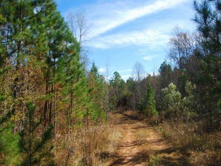 72.46 Acres Near Croft State Park : Spartanburg : Spartanburg County : South Carolina