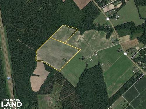 Pender Farmland : Willard : Pender County : North Carolina