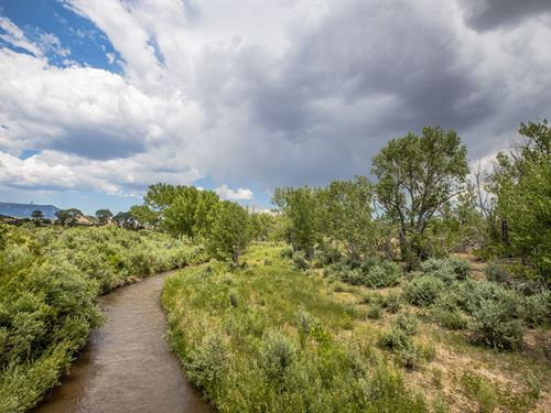 Riverfront Ranch With Water Rights : Gardner : Huerfano County : Colorado