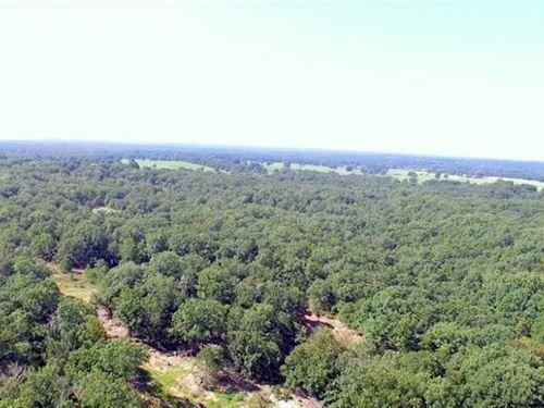 Boley 203 Acres : Boley : Okfuskee County : Oklahoma
