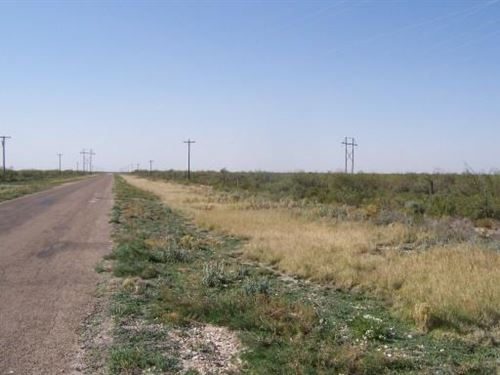 105 Acres in Pecos County, Texas : Fort Stockton : Pecos County : Texas