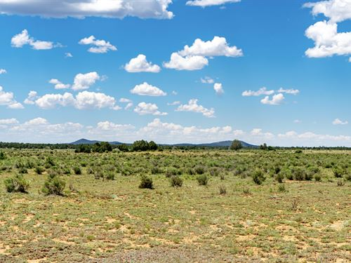 Mountain View Ranch Near Blm Land : Ramah : Cibola County : New Mexico