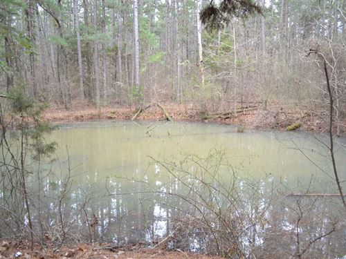 27.8 Acres of Recreational Tim : Leslie : Searcy County : Arkansas
