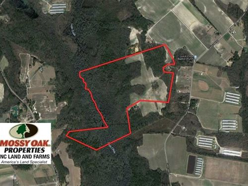 128 Acres of Farm And Hunting Land : Maxton : Robeson County : North Carolina