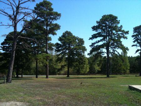 Greenwood : Antlers : Pushmataha County : Oklahoma