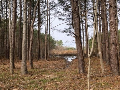 40.65 Acres In Hinds County In Raym : Raymond : Hinds County : Mississippi