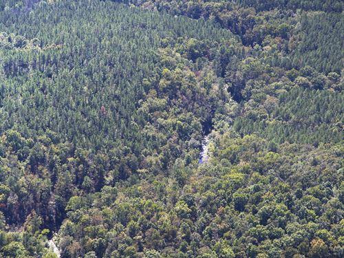 Hurricane Creek : Douglasville : Douglas County : Georgia