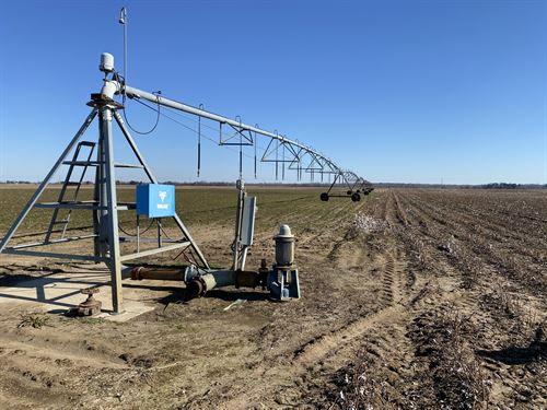 East Clay County, AR Farmland : Rector : Clay County : Arkansas