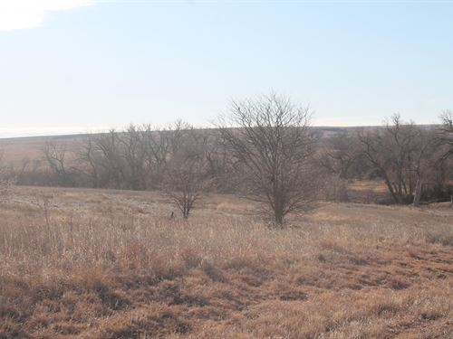 Trophy Ridge Trego County : Wakeeney : Trego County : Kansas