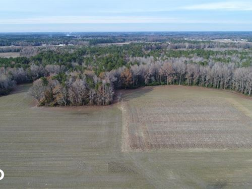 Hinnant-Edgerton Road Farmland & Ti : Selma : Johnston County : North Carolina