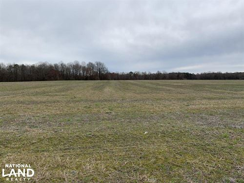 Micro Road Farmland & Home-Site : Selma : Johnston County : North Carolina