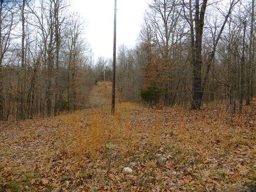 Hunting Land For Sale AR Ozarks : Pocahontas : Randolph County : Arkansas