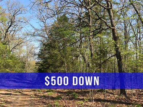 $500 Down on 6.9 Acres at Lake : Cedarcreek : Taney County : Missouri