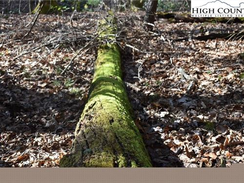 Over 6 Acres Beautiful Unrestricted : Glade Valley : Alleghany County : North Carolina