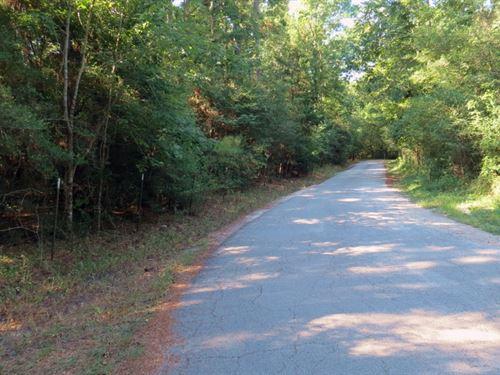 Danville Hideaway : Willis : Montgomery County : Texas