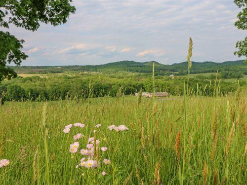 SR 371, 56 Acres : McDermott : Scioto County : Ohio