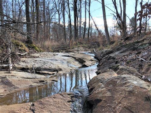 Lake Area Timber Tract : Eatonton : Putnam County : Georgia